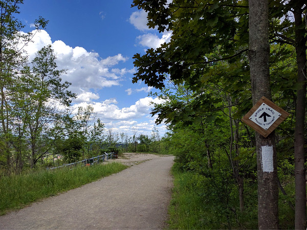 Bruce Trail sign and blaze on Radial Trail west of Chedoke Stairs (RTH file photo)