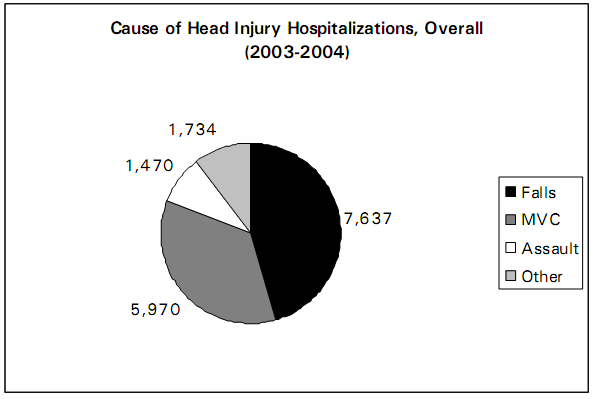 Cause of Head Injury Hospitalizations, 2003-2004