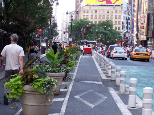 Protected bike lane in New York (Image Credit: Kelsey Cruz)