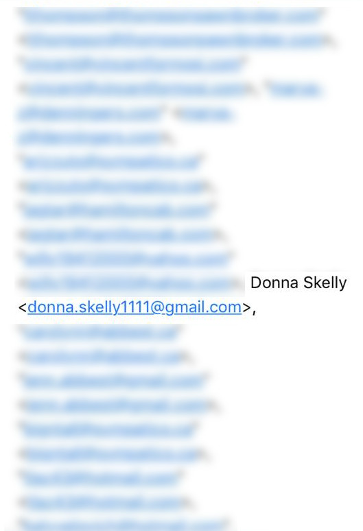 Donna Skelly private email address in email from Carol Lazich