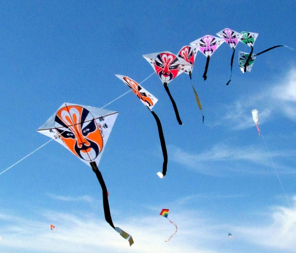Kite flying day essay