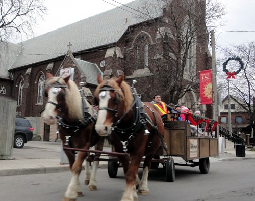 The past two Saturdays, a horse-drawn carriage has taken people-watchers up and down the street