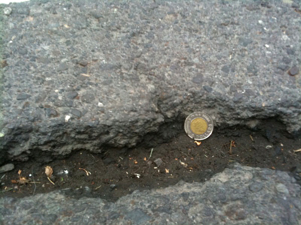 Crack on Cannon Cycle Track east of Adam (toonie for scale)