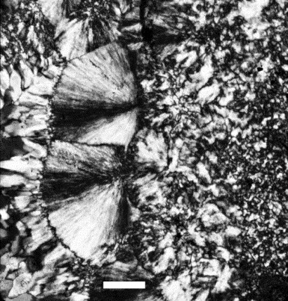 Figure 3: A micrograph of chert, showing both microcrystalline and fibrous textures. Mineralogically both are varieties of quartz, but the fibrous variety is commonly called chalcedony. Scale bar is 0.1 mm. Photo by L. Paul Knauth.