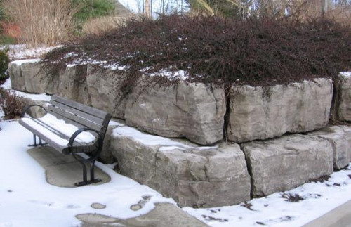 Figure 15: Blocks of Ancaster chert beds, used for landscaping.