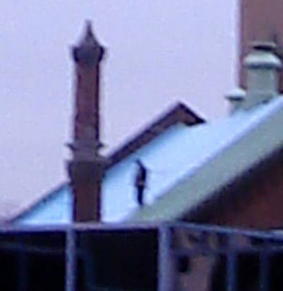 A lone figure on the roof