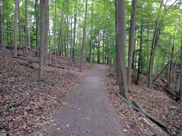 Spring Creek Trail, Dundas Valley