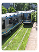 Suburban streetcar lines planted with grass.