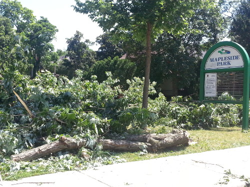 Branches down at Mapleside Park.