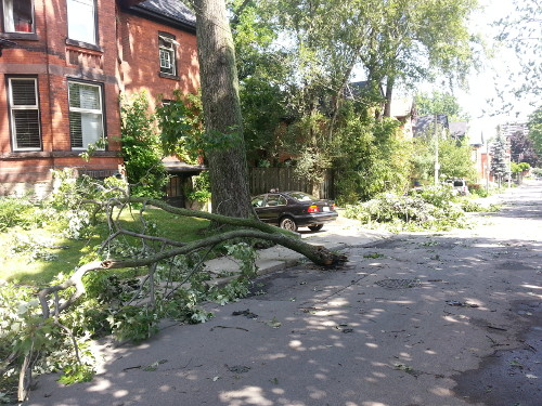 Southwest Hamilton was one of the areas to take the brunt of the high winds.