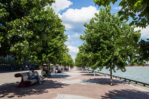 Tree-lined waterfront promenade (Image Credit: Yonge Street Media)
