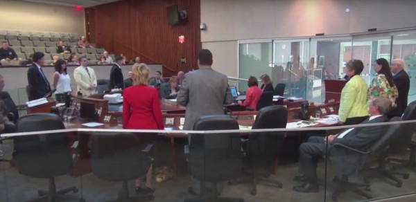 Standing recorded vote to defer Councillor Merulla's LRT motion (Image Credit: screen capture from TPR video)