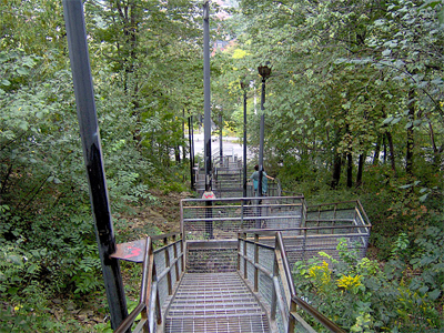 The Wentworth steps provide easy access to lower east downtown, in an oasis of old-growth Carolinian forest