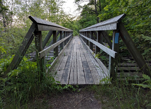 Wooden Bridge near Sydenham Falls