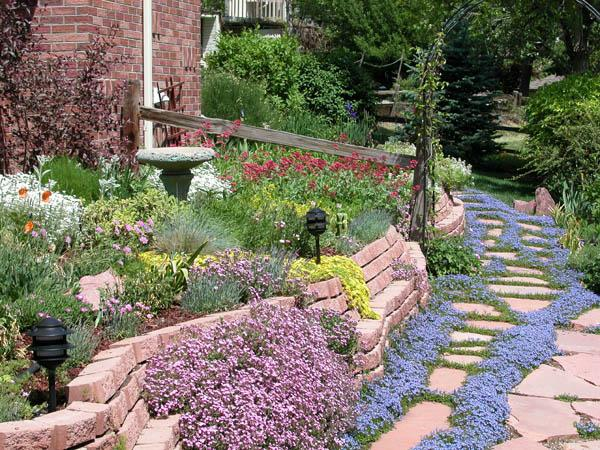 This Xeriscape in Colorado shows the beauty of a grass-free yard. No mower required! (Image Credit: Xeriscape)